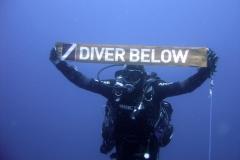 """13 08 2011 """"Diver Bellow"""" auteur Olivier Leprand"""